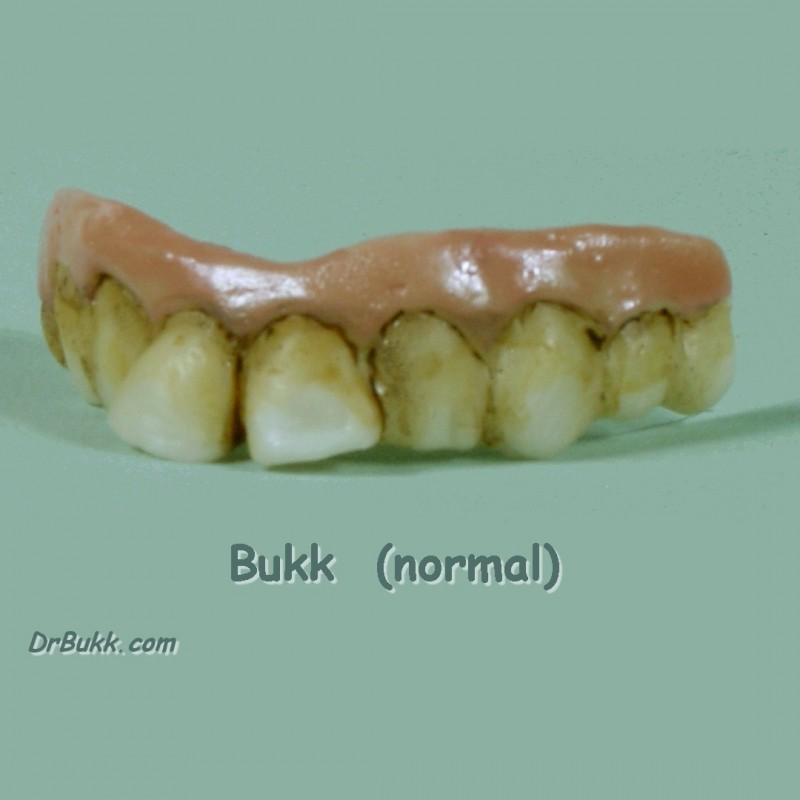 Bukk Teeth