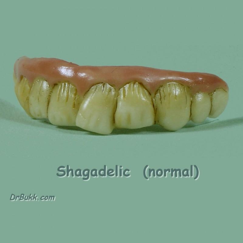Shagadelic Teef