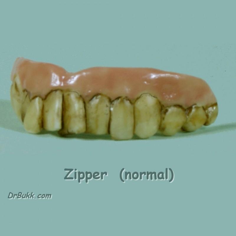 Zipper Teef