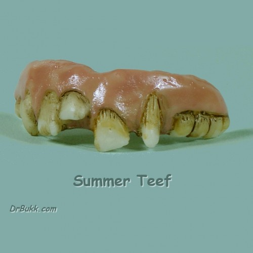 Summer Teeth