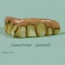Cowcatcher Teef